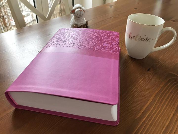 My new NIV-Bible